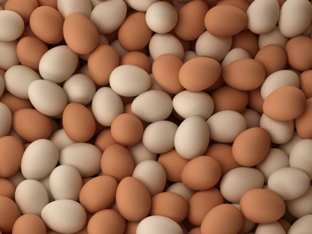 ăn chay có được ăn trứng không